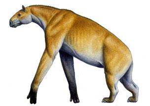 fiche animaux disparus chalicotherium