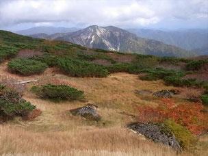 北弥陀ヶ原 日本庭園みたいです