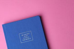 芝生のうえのベンチ。無造作に置かれたマーガレットの花。