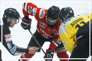 Eishockey SLZ St.Pölten