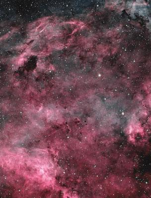 Barnard 343 area