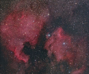 North American and Pelican Nebulae