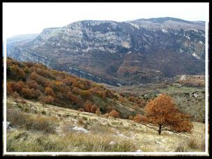 Plateau de Saint-Barnabé (Courmes)