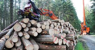 деревоперерабатывающая промышленность и пропитка древесины