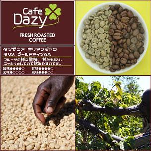 タンザニア キリマンジャロ AA 安曇野 コーヒー 珈琲