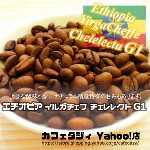 エチオピア最高グレード珈琲豆 送料無料 g kg サンプル モカ モカコーヒー エチオピア イエメン G1 イルガチェフ イルガチェフェ イルガチェフィ 業務 高級