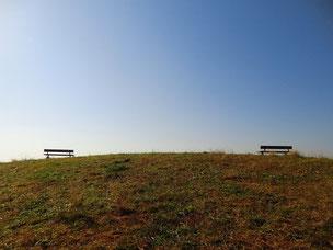 ●公園の見どころのひとつ飛行場を一望できる「展望の丘」