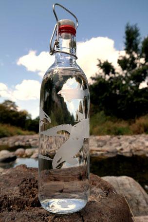 wal, wale, trinken, flasche, glasflasche, wasserflasche, familie, schwertwal,