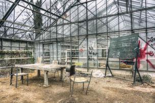 University E. [Greenhouses]