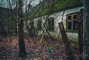 """Farmhouse """"Autumn Leaves"""" [DK]"""