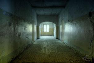 Asylum for the Insane N. [Revisit]