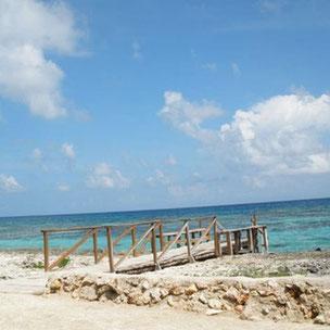 Snorkel en Playa Coral  Varadero
