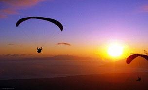 Renta-de-vans-con-chofer-para-ir-a-donde-quieras-y-practicar-ecoturismo-1