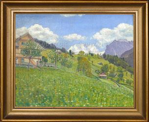 nr.2043:  Blumenwiese im Berner Oberland