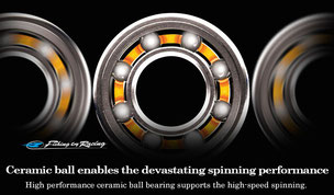 ZPI Bousei Sic Ball Bearings