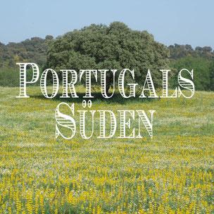 Portugal, Süden, Alentejo, Frühling, Korkeiche, brütende Störche, Biketouring in Portugal