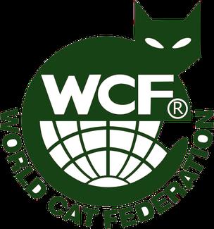 wcf клубы в москве