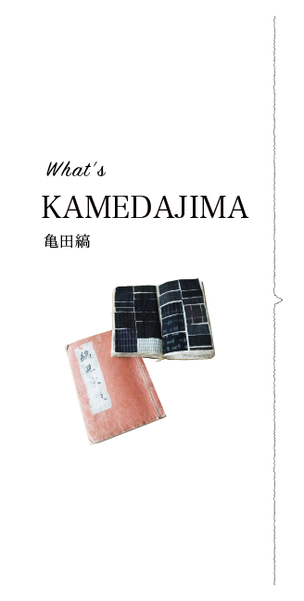 What is KAMEDAJIMA 亀田縞って何?