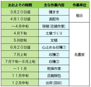 野田葉たばこ生産組合の作業スケジュール