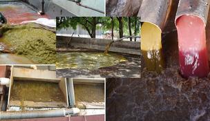 rumen, estiércol biodigestores, biogas , aqualimpia