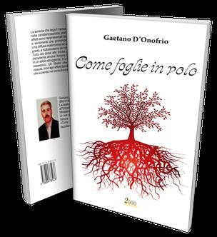 Come foglie in volo, la silloge poetica di Gaetano D'Onofrio