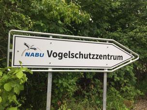 Foto: NABU / D. Schmidt-Rothmund