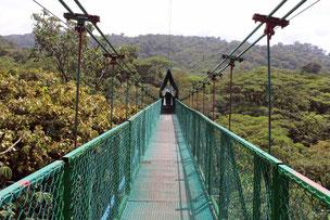 Baumwipfelpad Sevatura Park, Monteverde, Costa Rica