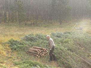 Entbuschung von Magerrasen in einer Kiesgrube, Foto: S. Oldorff