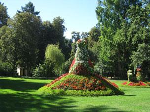 Der Blumenpfau im Kurpark
