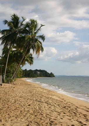Rincon, vacation, villa, beachside, Corcega
