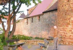Stadtmauer Wachenheim