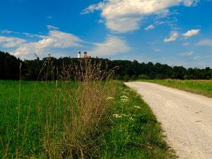 herrliche Radrouten rundum Vilshofen