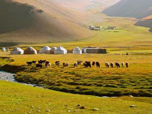 die Jurten der Nomaden