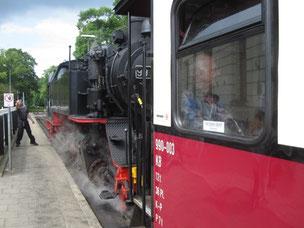 """Touristenspaß: Die Bäderbahn """"Molli"""""""