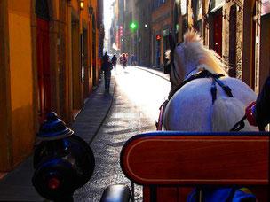 mit der Kutsche durch die historische Altstadt