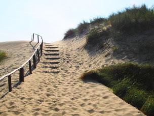 der Weg zur Dünenkuppe hinauf