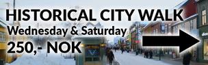 Tromsø Budget Tours - City Walks, Aurora flights & more
