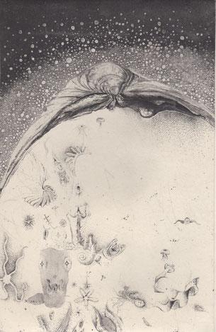 海棲 銅版画 31×20cm