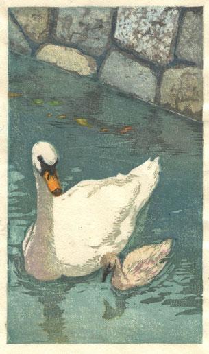 白鳥の親子 木版画 20.7x12cm