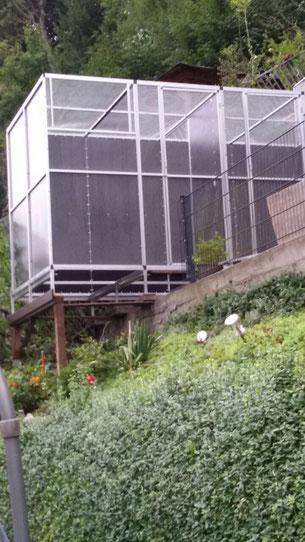 Mobiler Taubenschlag in Hanglage, eine Meisterleistung unseres Kunden