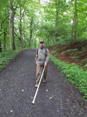 Mit Langstock einen Waldweg trainieren.