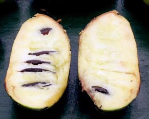 Foto 2 - Elke Pawpawvrucht bevat een aantal zaden, variërend tussen de 2 en 10 zaden.