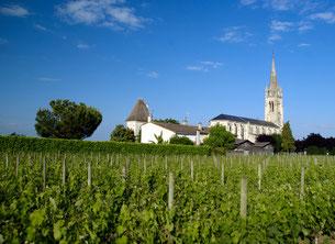 Vue du vignoble de Pomerol
