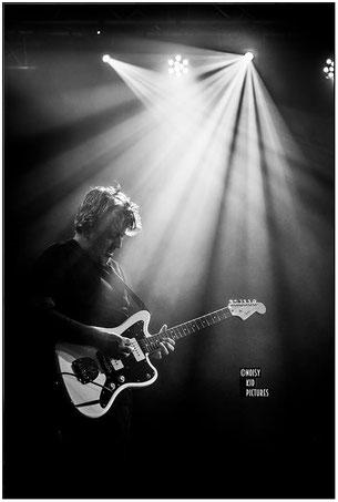 Lors de concerts un photographe de Bruxelles performe