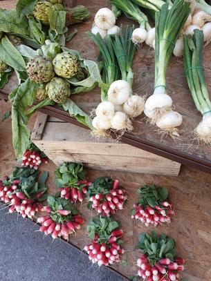 Légumes de saison Bio et locaux sur Robion