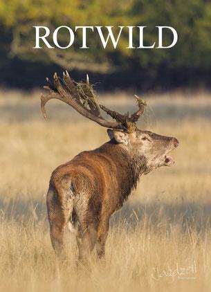 Jagdzeit International Themenband Rotwild Cover röhrender Rothirsch