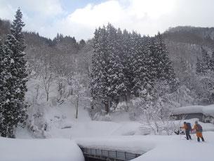 林道を進みます。平年の半分くらいの積雪か?