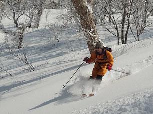 豊富な雪とパウダーで快適に滑降