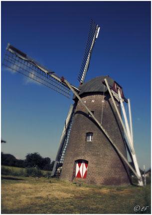 Seitenansicht: Waldfeuchter Mühle