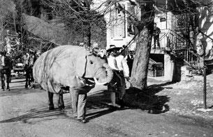 Luthern Bad, Fasnacht, Elefant vor Gasthaus Hirschen, um 1960